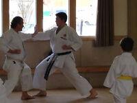 Karate Classes for Adults and Children in Northwest Edmonton
