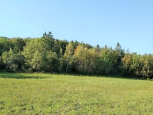 Acreage for sale with fields and woodlot near Sussex, NB