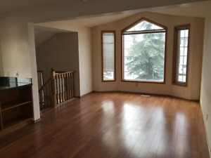 Newly renovated, dog-friendly, 4-bedroom home in Coventry