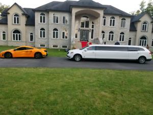 Hamilton Limo & Limousine Rental Service - Wedding - Toronto