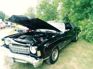 Dont miss out 1975 monte carlo