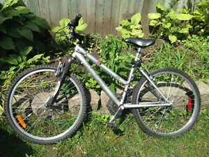 "Raleigh Summit - silver - barely used - 18"" frame"