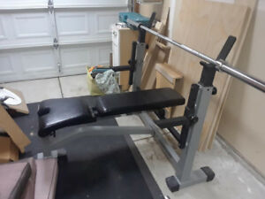 Nautilus Adjustable Bench Press