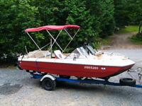 bateau,120 force ,toit binini , rack a ski ,toile ,sonar,