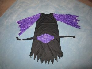 Witch Costume with Cobweb Belt