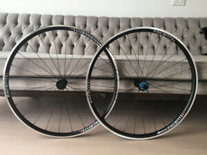 2018 Pacenti Forza Wheelset with 25 mm Corsas