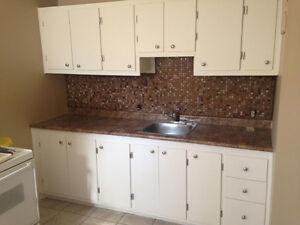Bright 1bdr apt / newly renovated