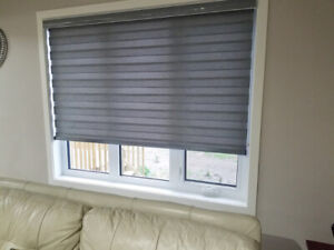 Pet and Child Friendly Zebra Blinds for Homes and Offices