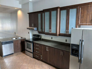 Luxurious 4 Bedroom Loft with Laundry & Parking (Great Location)