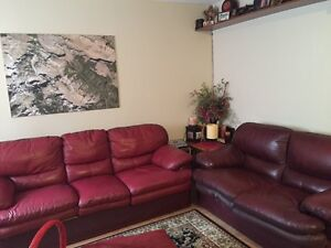 LEATHER RED COUCHES FOR SALE Kitchener / Waterloo Kitchener Area image 1