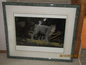 Framed Print by John Stone - Silent Movers