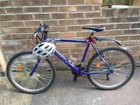Reflex Storm Force All Terrain Bike