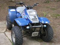 1995 Polaris 300 2x4 for fix up or parts