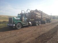 Logging truck western star unit
