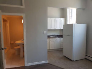 BRAND NEW - 1 Bedroom Fully Renovated Apartment