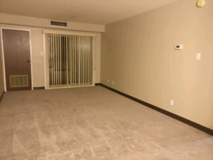Apartment For Rent (Negotiable Price)