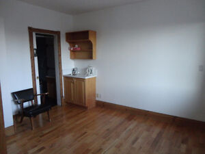beautiful and sunny office with full ensuite, central downtown
