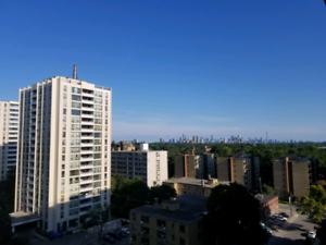 Eglinton West room available January 1st