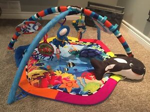 Baby Einstein Play Mat / Gym