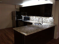 Best 1 Bedroom Apartment Located Downtown Kitchener