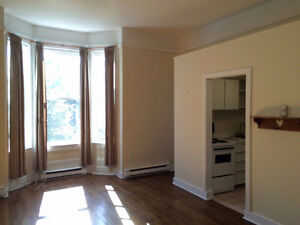 Downtown Apartment for Rent St. John's Newfoundland image 4