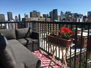 2 Bed/1 bath/full furnished apt/downtown all inclusive.