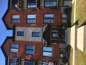 Sunny furnished 41/2 apartment for rent