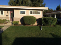 FALL CLEAN-UP,Shrubs&Hedge trimming,Lawn care Lethbridge & Taber