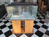 35 Gallon Fish Tank includes STAND, lid, filter and light