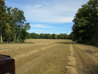 FOR SALE IN SAUGEEN SHORES