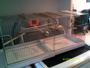 cage de reproduction canari