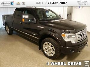 2013 Ford F-150 Platinum   - $287.47 B/W