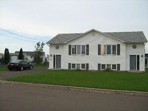 Spacious, great location, live and relax in Moncton North!!