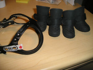 dog boots and harness
