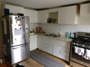 LARGE 3BR Apartment on Locke St. for on rent July 1st - $1600