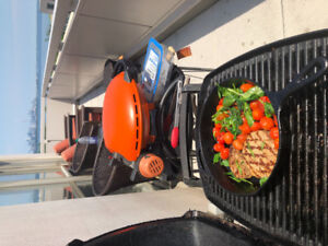 Weber electric outdoor bbq with stand