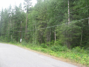 Lot for Sale Prince George British Columbia image 5