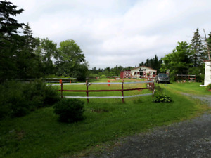 3 Horse Stalls Available for Board