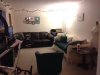Oliver Square! Roommate wanted!