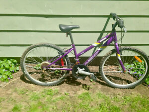 """Must Go Girls 24"""" And 26"""" Bikes A Little Rusty"""