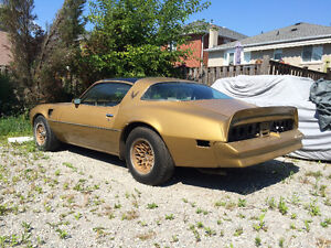 1978 Trans Am 6.6 T/A special edition 4/spd M-21 matching number