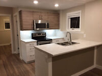 Beautiful new two bedroom legal suite in Evergreen