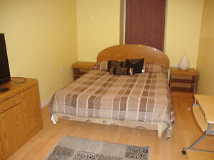 1 FURNISHED ROOM IN A SHARED 2 BEDROOM BASEMENT APRT