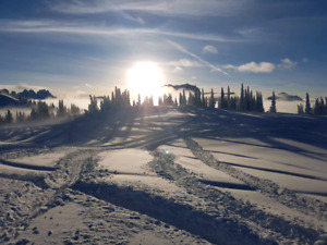 Looking to purchase lot in Revelstoke