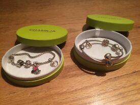 Chamilion bracelets and charms