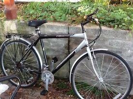 Men's / unisex white and grey mountain bike