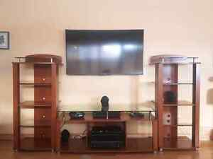 Entertainment center / shelving unit