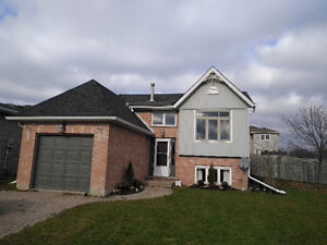 Updated home with a pool Kitchener / Waterloo Kitchener Area image 1