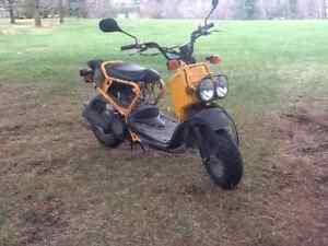 Scooter Honda Ruckus