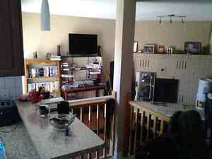 Room for rent 425 a month Kitchener / Waterloo Kitchener Area image 3